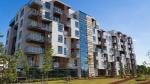 cuturello,logement,social,loi SRU