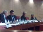 subventions2013 cg 06,fleuve var,ticket à 1euro,concas,damiani,vinciguerra;gourdon,mottard